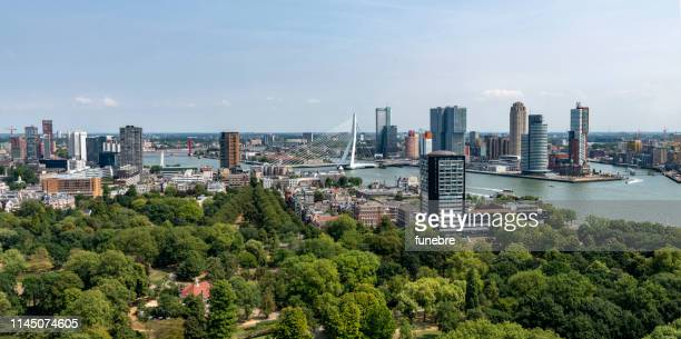aerial view of the rotterdam skyline - rotterdam stock pictures, royalty-free photos & images
