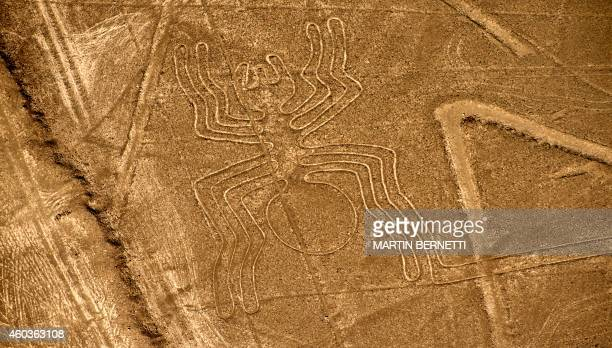 Aerial view of the Spider at Nazca Lines some 435 km south of Lima Peru on December 11 2014 Geoglyphs can be seen only from atop the surrounding...