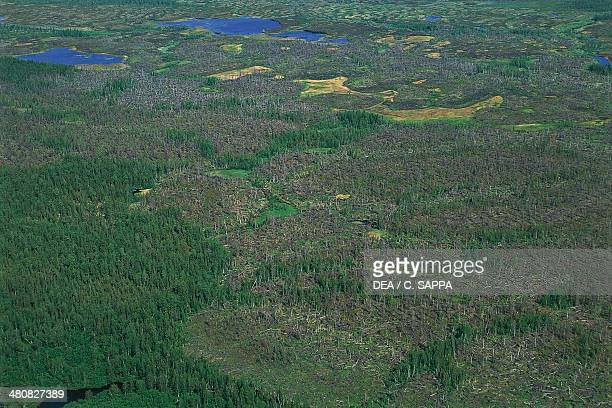 Aerial view of the surroundings of Igarka Siberia Russia