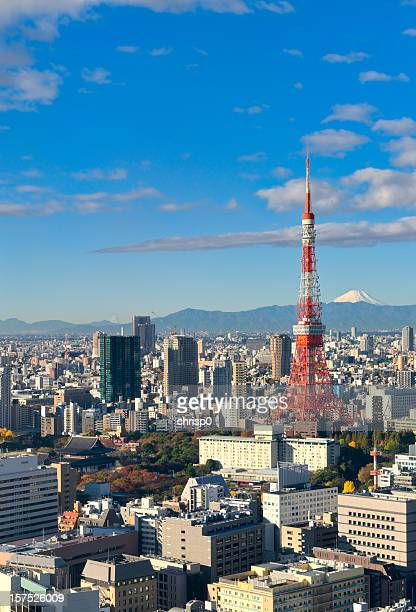 Aerial View of Tokyo and Mt. Fuji (XXXL)