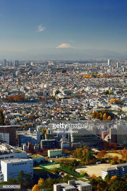 Aerial view of Tokyo at autumn day