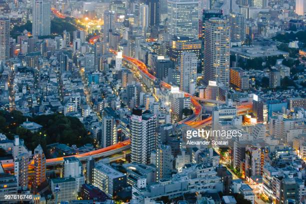 Aerial view of Tokyo at dusk with illuminated streets, Tokyo, Japan
