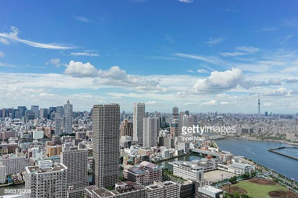 Aerial view of Tokyo Bay area with Tokyo Sky Tree on the horizon