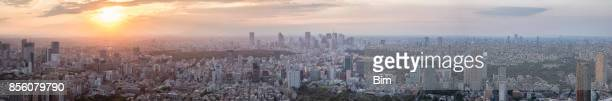 Aerial View of Tokyo Cityscape at Sunset, Japan