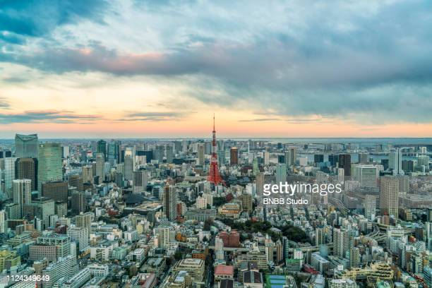 aerial view of tokyo cityscape with sunset - 東京都庁舎 ストックフォトと画像