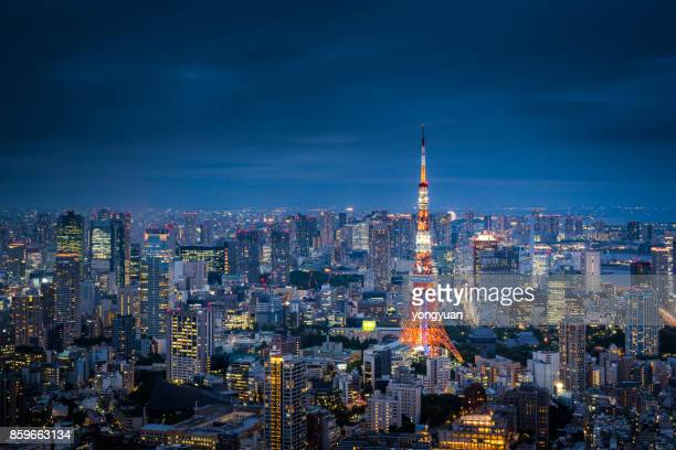 Aerial View of Tokyo Skyline at Dusk