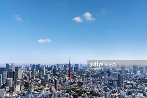aerial view of tokyo skyline - 昼間 ストックフォトと画像