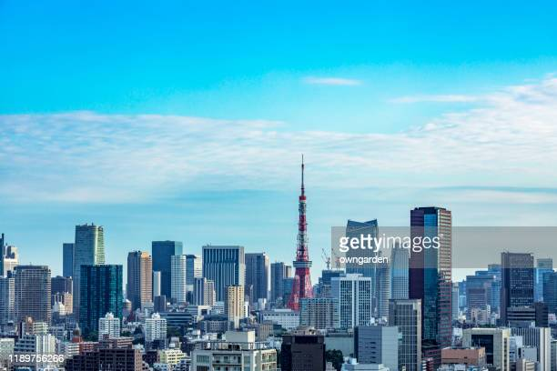 aerial view of tokyo skyline - 晴れている ストックフォトと画像