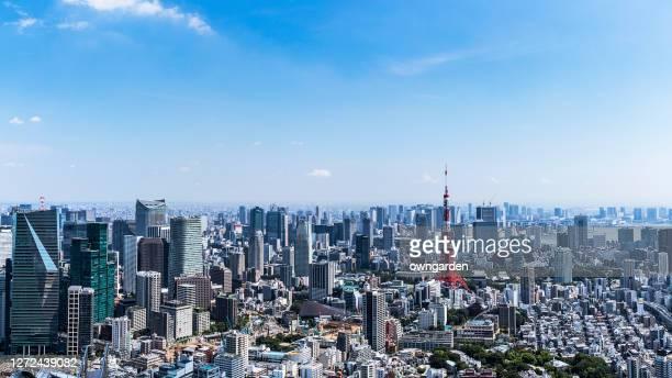 aerial view of tokyo skyline - stadsdeel stockfoto's en -beelden