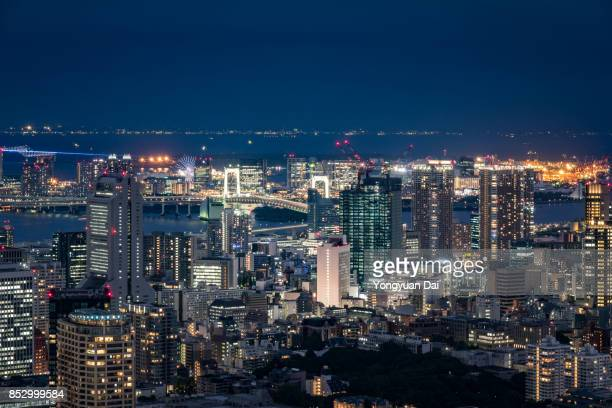 Aerial View of Tokyo Skyscrapers at night