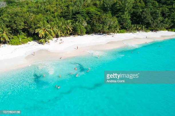 Aerial view of tourists swimming in tropical beach