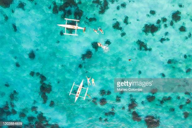 aerial view of tourists swimming with turtle, philippines - philippines stock pictures, royalty-free photos & images
