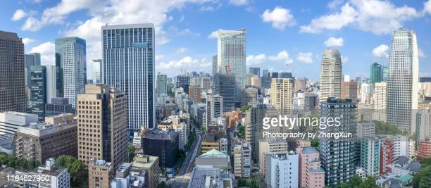 aerial view of town tokyo. - 昼間 ストックフォトと画像