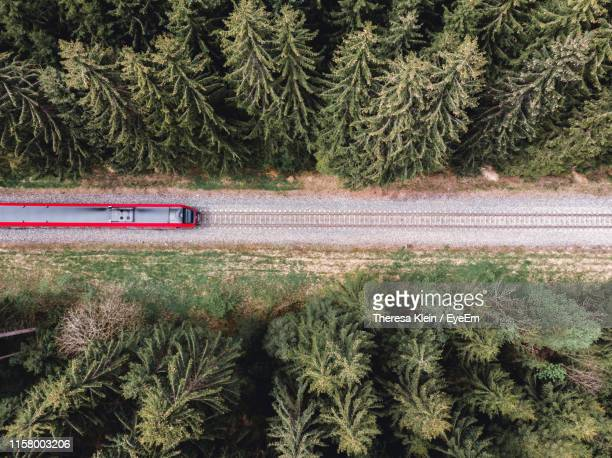 aerial view of train amidst trees - ansicht von oben stock-fotos und bilder