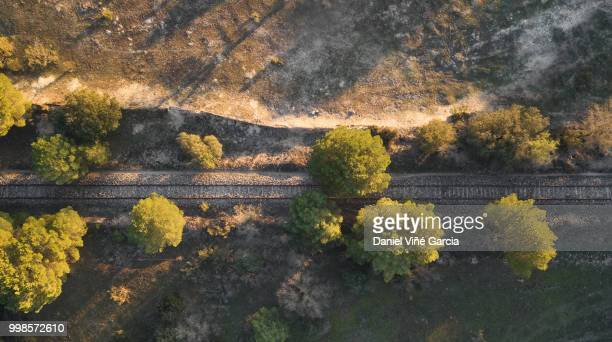 Aerial View Of Train Tracks And trees.