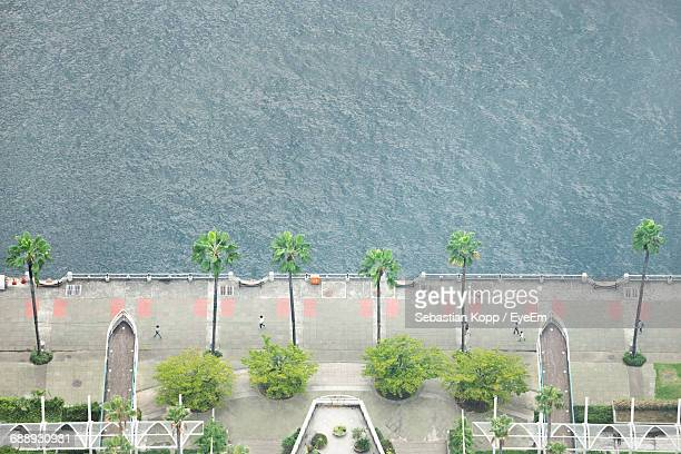 Aerial View Of Trees At Promenade By Sea