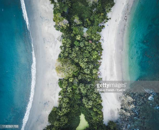 aerial view of trees on beach against sky - costa rica stock pictures, royalty-free photos & images