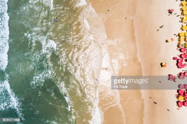 空から見た熱帯のビーチ