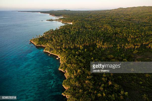 Aerial view of tropical coastline