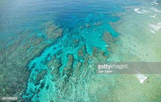 Aerial view of tropical coral reef