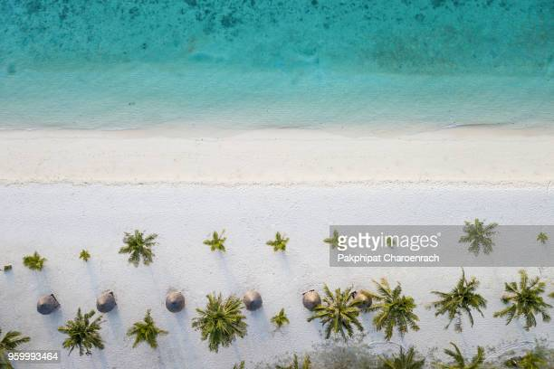 aerial view of tropical white sand beach at sunrise beach, lipe island, thailand. - clear sky stock pictures, royalty-free photos & images