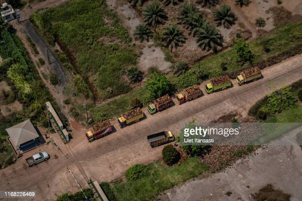 Aerial view of trucks carrying palm oil fruits during fire patrol by Indonesian national board for disaster management on September 14, 2019 in...
