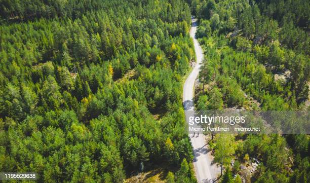 aerial view of two cyclists on a small dirt road in the middle of a forst in finland - wielrennen stockfoto's en -beelden