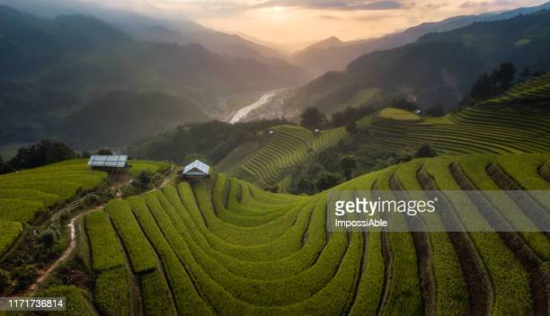 aerial view of u curve rice terrace and the mountain landscape view sunset time at mu cang chai, vietnam - impossiable stock pictures, royalty-free photos & images