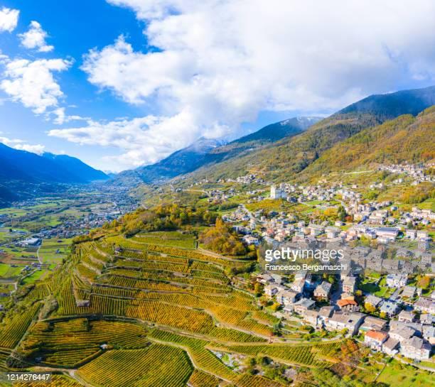 aerial view of vineyards and villages of valtellina in autumn. - italia stockfoto's en -beelden