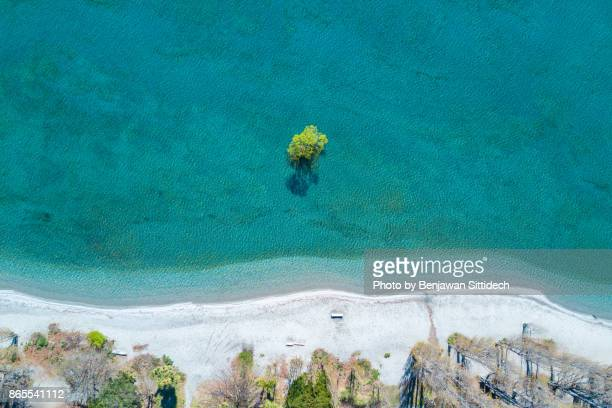 aerial view of wanaka tree, south island, new zealand - lakeshore stock pictures, royalty-free photos & images