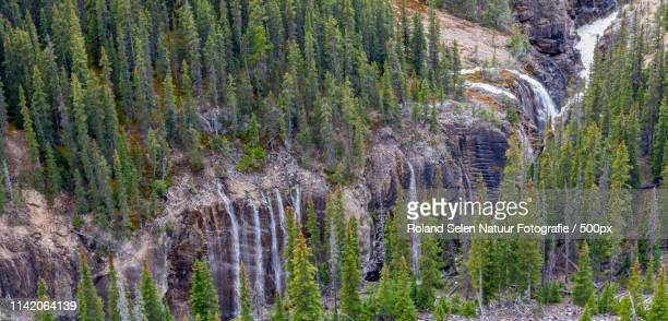 Aerial view of waterfalls in forest