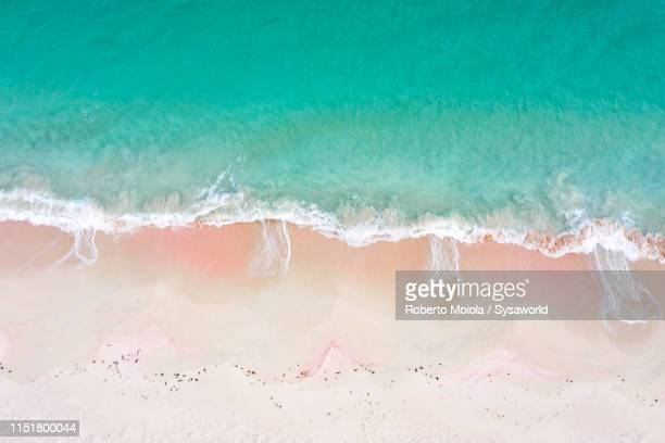 aerial view of waves crashing on pink sand beach, caribbean - バハマ ストックフォトと画像