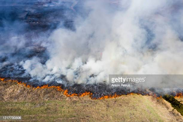 aerial view of wildfire on the field. huge clouds of smoke - forest fire stock pictures, royalty-free photos & images