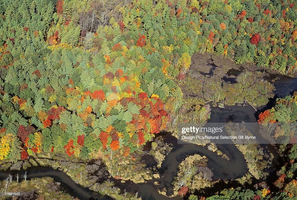 Aerial view of Willard Brook State Park in autumn color : Stock Photo