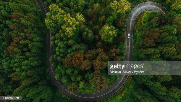 aerial view of winding road amidst trees in forest - thoroughfare stock pictures, royalty-free photos & images