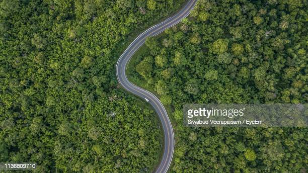 aerial view of winding road amidst trees in forest - bombe photos et images de collection