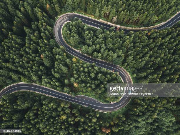 aerial view of winding road during amidst trees - straßenverkehr stock-fotos und bilder