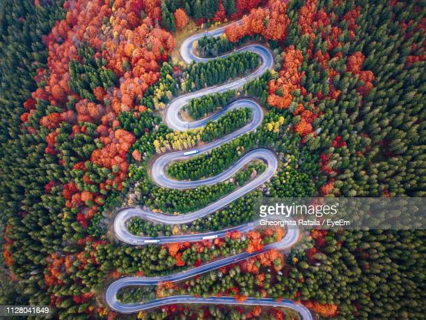 aerial view of winding road in forest during autumn - winding road stock pictures, royalty-free photos & images