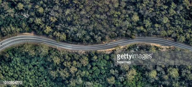 aerial view of winding road in the forest. victoria, australia - weg stockfoto's en -beelden