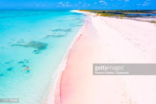 aerial view of woman floating in turquoise sea, pink sand beach, barbuda, caribbean - paisajes de republica dominicana fotografías e imágenes de stock