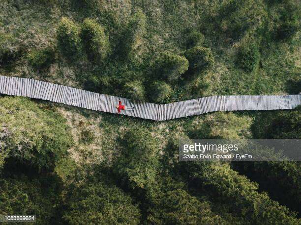 Aerial View Of Woman Lying On Boardwalk Amidst Trees