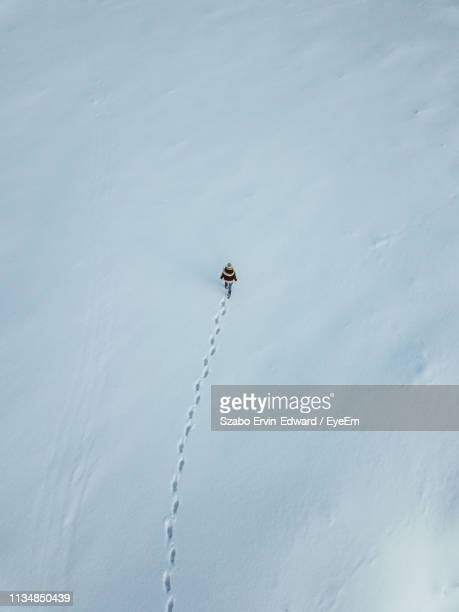 aerial view of woman walking on snow covered field - impronta del piede foto e immagini stock