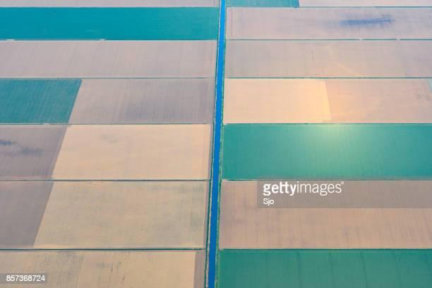 luchtfoto op abstracte landbouw landschap in flevoland, nederland - landbouwgrond stockfoto's en -beelden