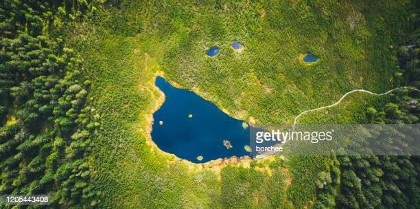 luchtfoto op het pittoreske bergmeer - slovenië stockfoto's en -beelden