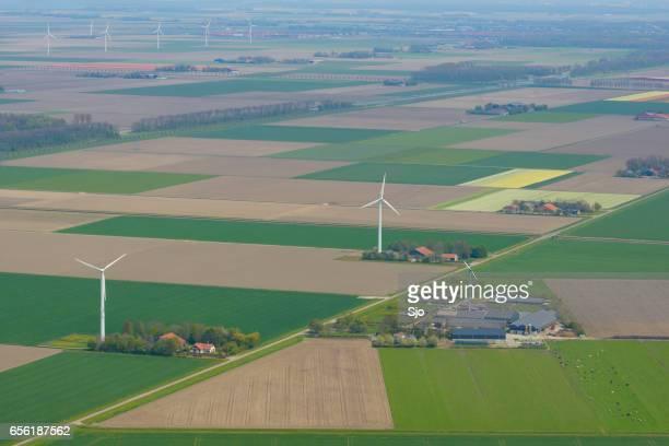 Luchtfoto op de velden van de tulp bloemen en windturbines