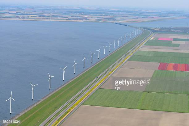 Aerial view on wind turbines with fields of tulip flowers