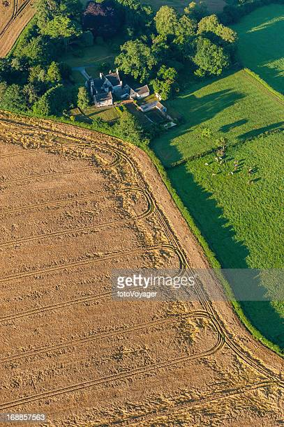 aerial view over farm fields cattle and crops - overhemd en stropdas stock pictures, royalty-free photos & images