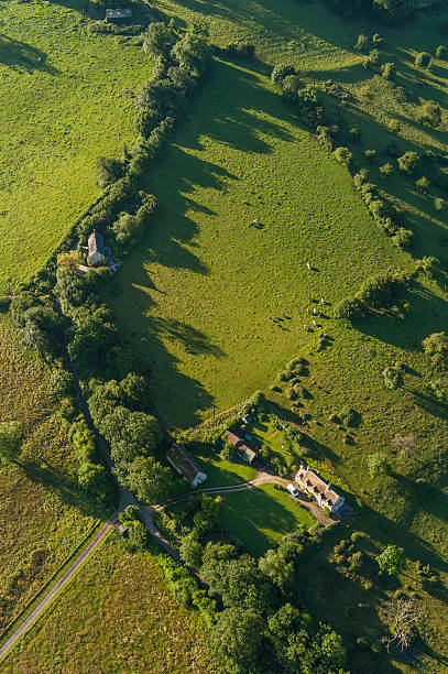 Aerial view over farmhouse livestock and green pasture