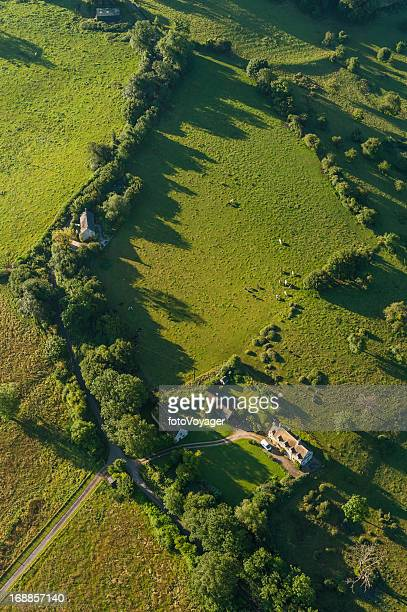 aerial view over farmhouse livestock and green pasture - overhemd en stropdas stock pictures, royalty-free photos & images