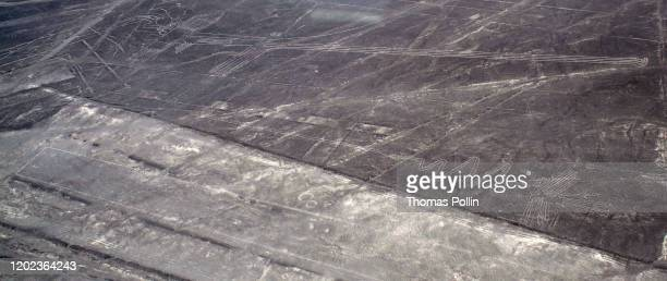 aerial view over nazca lines - nazca lines stock pictures, royalty-free photos & images